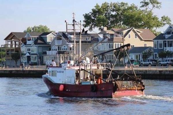 Jersey Shore Ocean Block Rentals